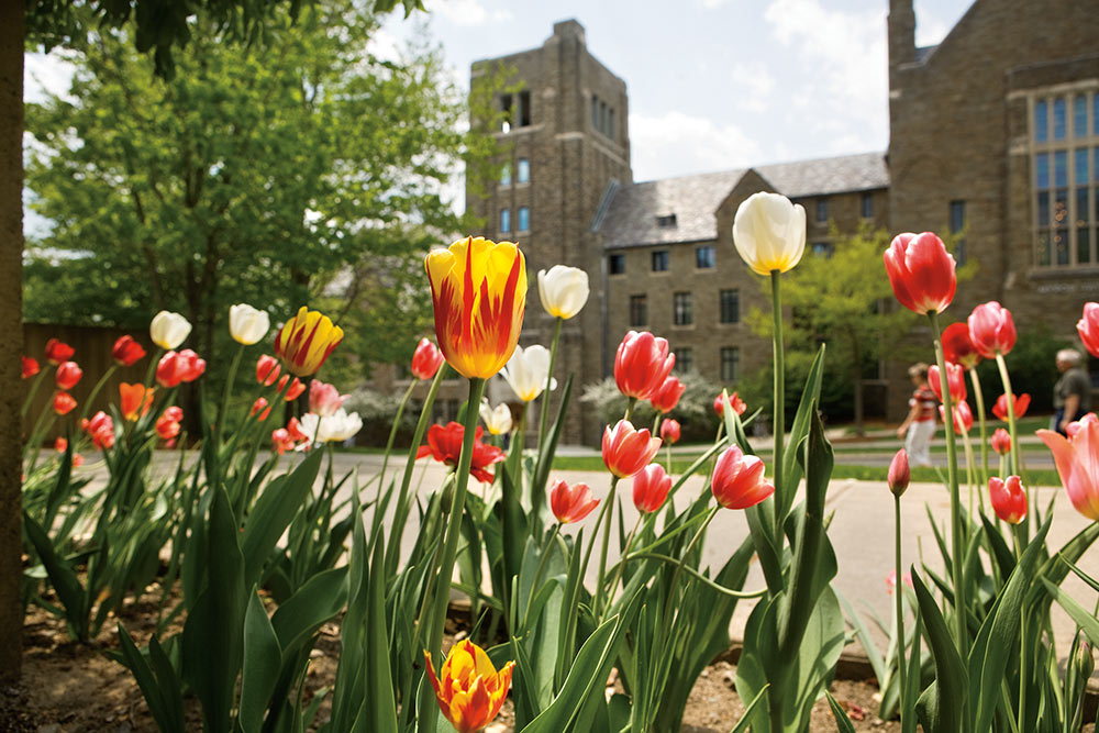 Photo of flowers in front of Myron Taylor Hall